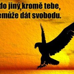 svoboda-1